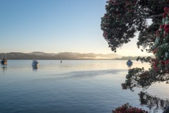 A-stunning-summers-morning-at-Mangonui