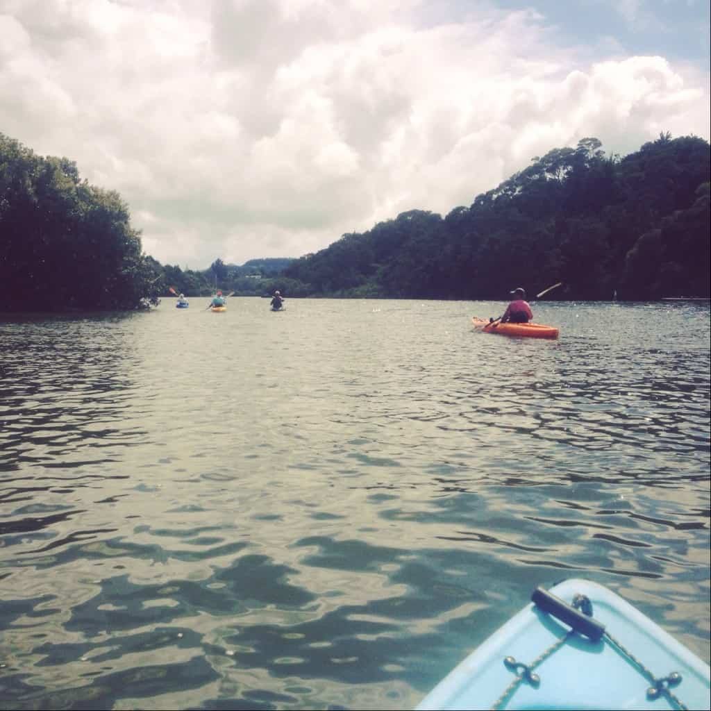 Kayaking is a great way to explore the Kerikeri Inlet.