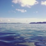 Bay of Islands weather: what to expect