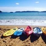Kayaking in Paihia