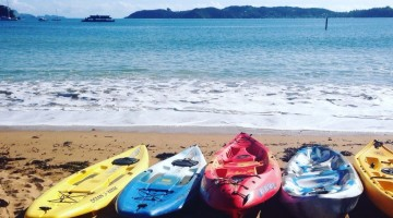 Kayaking in Paihia, Bay of Islands