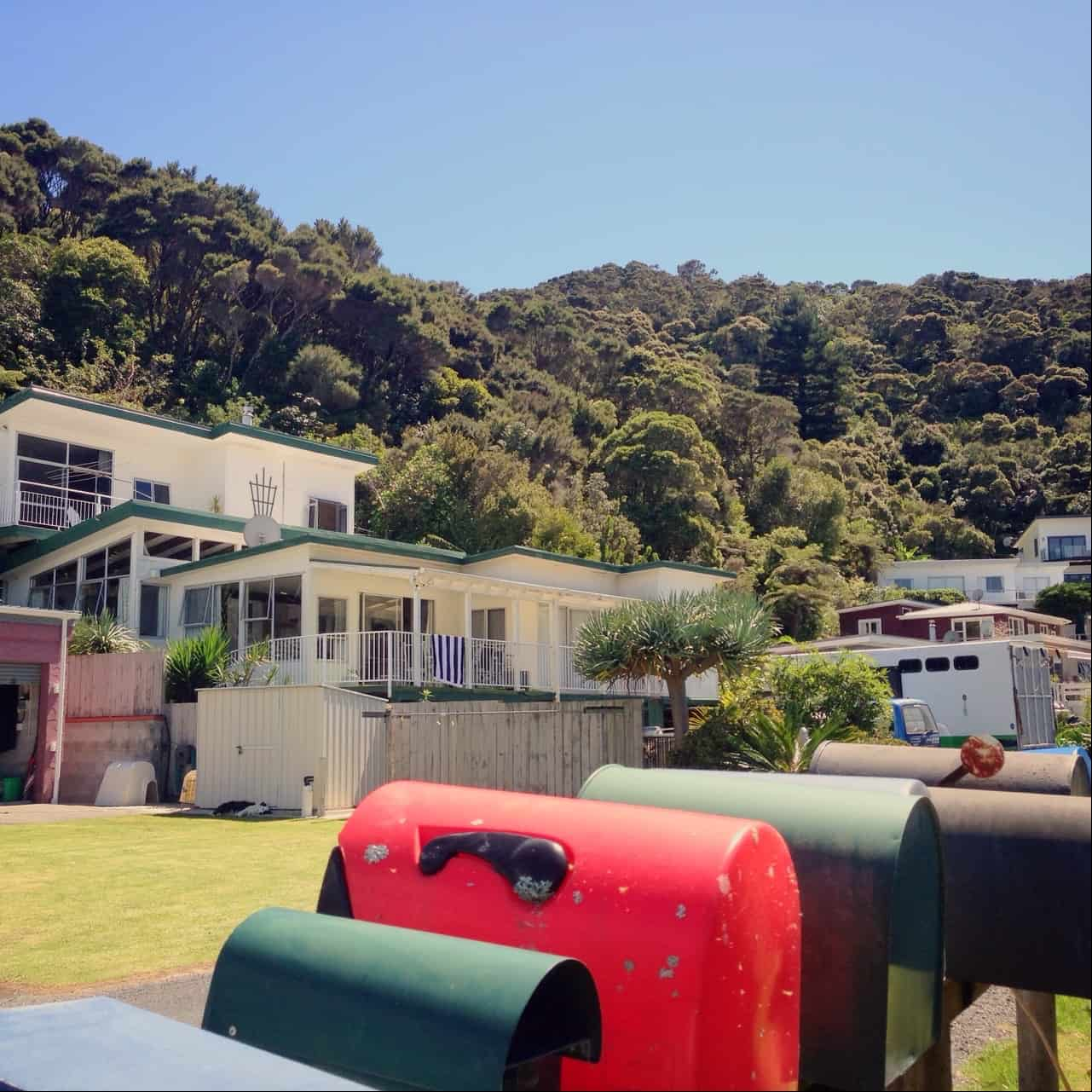 Opito Bay is a typical kiwi seaside settlement, with traditional baches (holiday homes).