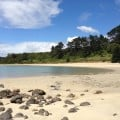 If you're lucky, you might have Taronui Beach all to yourselves, like we did when we visited.