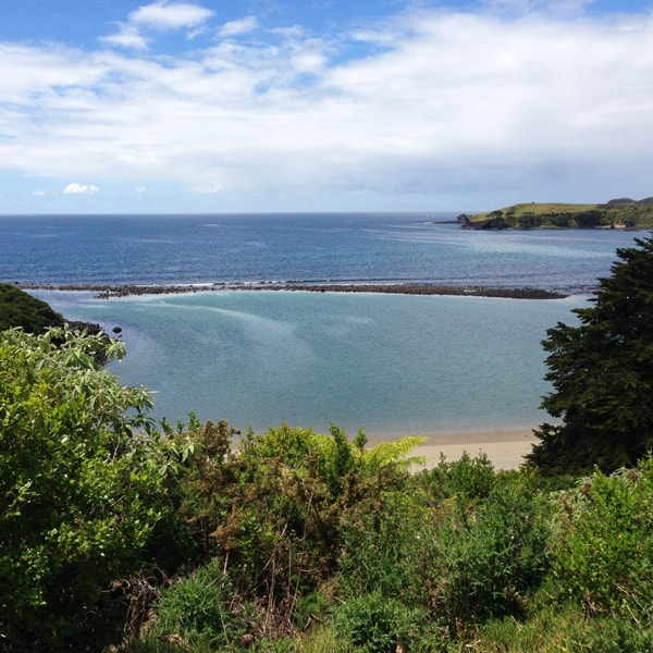 Yipee, a glimpse of the sea! You can see the rocks that create a lagoon effect at Taronui Beach.