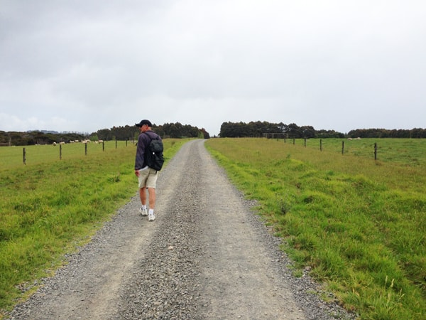Walk across farmland to reach Taronui Beach.