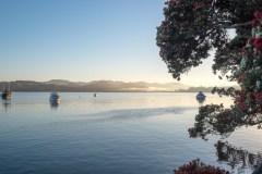 A-stunning-summers-morning-at-Mangonui